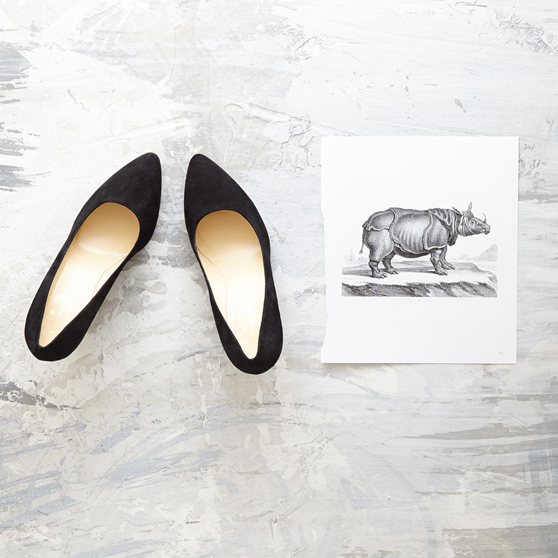 shoes and rhino picture